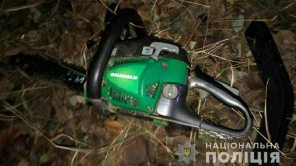 """В Запорожской области """"черные лесорубы"""" уничтожили целую лесополосу"""
