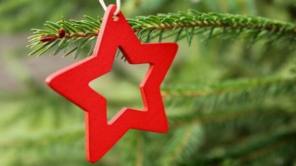 """""""Зеленая"""" утилизация новогодних елок началась в Луцке"""