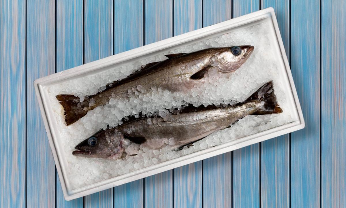 Рыбу нужно правильно размораживать