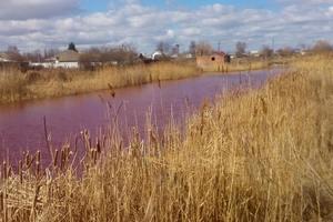 В Черниговской области озеро стало розового цвета