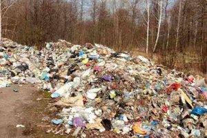 В Житомирской области обнаружили львовский мусор