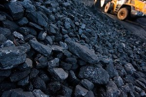 Nasalik has announced plans to ban the import of coal from Russia