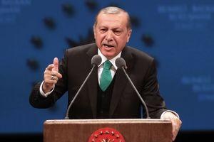 Отношения Анкары с ЕС будут пересмотрены после референдума в Турции – Эрдоган