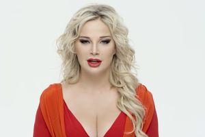 Жена Вороненкова накануне его убийства выпустила эротический клип