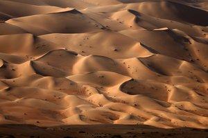 Из-за ошибки навигатора девушка едва не погибла в пустыне