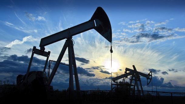 Украина сократила добычу нефти иугля