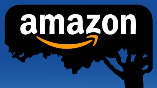 Укрпочта планирует привлечь Amazon наукраинский рынок