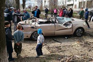Дерево раздавило легковушку в Запорожской области
