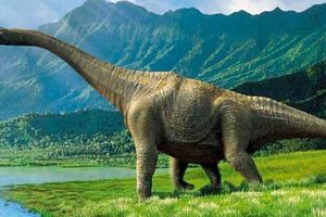 В Австралии, обнаружили следы гигантского динозавра