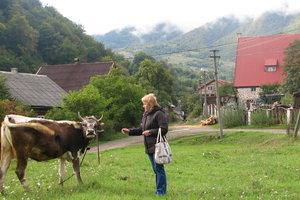 Чем будут привлекать туристов в Украину