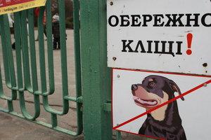В Киеве – сезон клещей: куда обращаться, если обнаружили укус