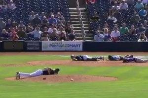 Рой пчел атаковал бейсболистов во время матча
