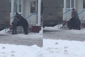 Россиянин оседлал медведя на глазах у прохожих