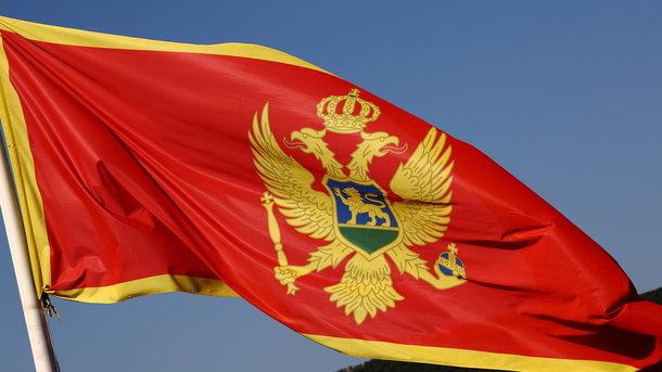 Подозреваемого вгосперевороте вЧерногории задержали вРоссии