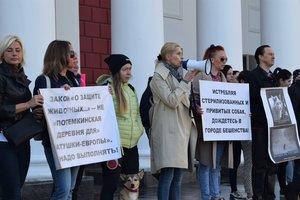 В Одессе зоозащитники пикетировали ОГА