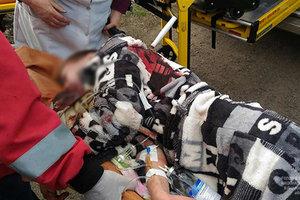 В Днепропетровской области подростки били 8-классника кирпичом и добивали ножом