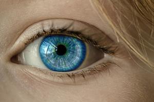 Ученые нашли способ лечения слепоты