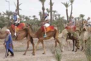 Стаховский преодолел квалификацию в Марракеше и отправился кататься на верблюдах