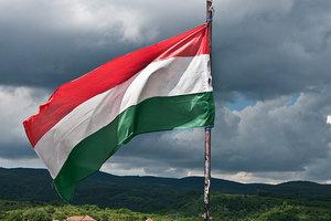 МИД Венгрии выступает за возможность двойного гражданства для венгров в Украине