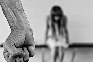 В Александрии арестовали насильника 16-летней девушки