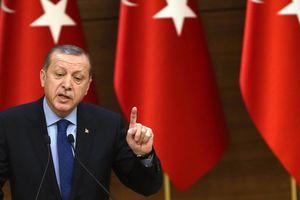 Эрдоган заявил, что никогда не выдаст Берлину задержанного немецкого журналиста