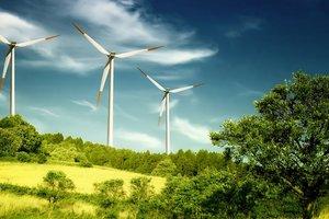 Индия хочет инвестировать в альтернативную энергетику Украины