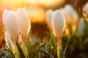 Украинцев ждет резкая перемена погоды: снег и похолодание