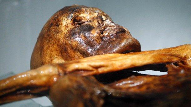 Вгробнице древнеегипетского судьи отыскали шесть мумий