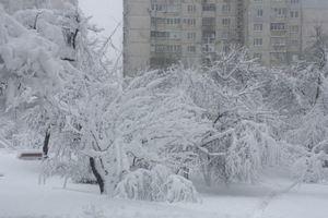 Синоптик о непогоде: в Украину идет новый циклон со снегом и дождем