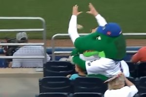 Талисман защитил ребенка от попадания бейсбольного мяча