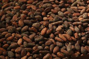 В мире резко обвалились цены на какао