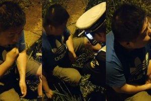 Пьяный водитель ел траву, чтобы пройти тест на алкоголь