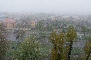 Во Львов вернулась зима