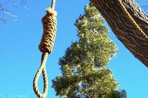 ЧП в Тернопольской области: после ссоры с дедом внук ушел в лес покончить с собой