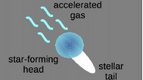 Галактику-медузу отыскали вмиллиарде световых лет отЗемли