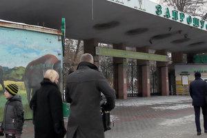 В Киевский зоопарк будут пускать по карточкам