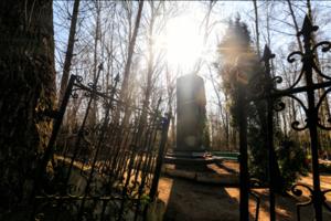 В Одесской области пьяный пенсионер устроил погром на кладбище