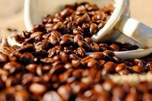 Ученые выяснили безопасную порцию кофе для организма человека