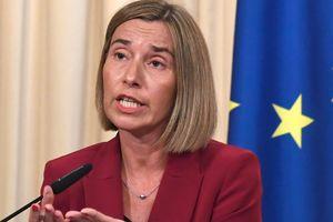 В Евросоюзе признают итоги референдума в Турции - Могерини