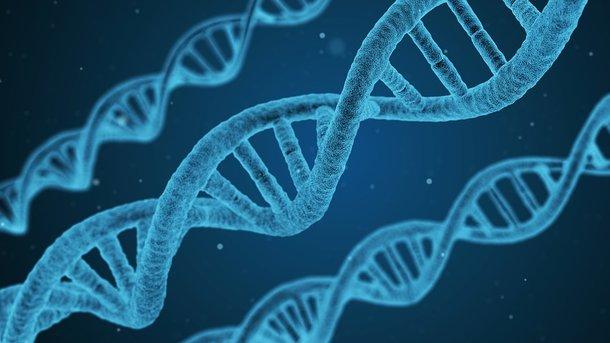 Люди матерятся из-за генных мутаций— Ученые