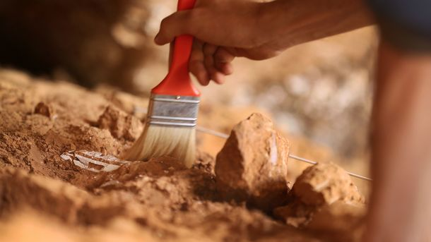 В Китайская республика впроцессе строительных работ найдено древнее захоронение