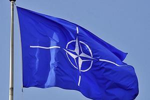 Вблизи границы России начались крупнейшие учения НАТО