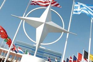 Трамп и Макрон договорились встретиться на саммите НАТО