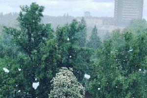 Выпавший в мае снег шокировал украинцев: реакция соцсетей