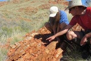 В Австралии нашли древнейшие следы жизни на земле