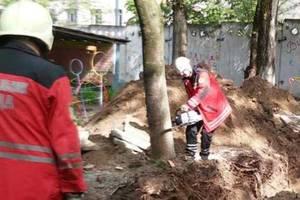 В Киеве спасатели спилили опасное дерево на территории детсада