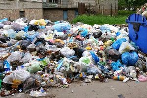 Садовый: на улицах  Львова пять тысяч тонн мусора, а поддерживают только французы