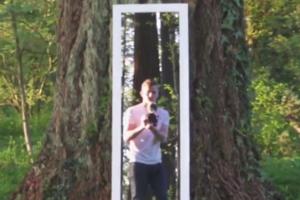 """""""Жуткий лес"""": аниматор снял иллюзию бесконечного прохождения через зеркало"""