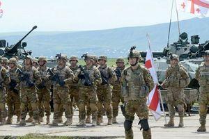 США готовы помочь в реформировании грузинской армии