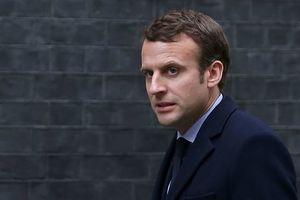 Большинство французов пока довольны Макроном - опрос